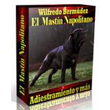 Libro Electrónico El Mastín Napolitano Adiestramiento Y Más