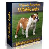 Libro Electrónico El Bulldog Inglés  Adiestramiento Y Más