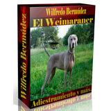 Libro Electrónico El Weimaraner Adiestramiento Y Más