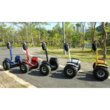4000w/84v Two Wheel 19in. Off Road Electric Self Balance
